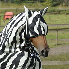 Horse Fly Masks Uk Horse Grazing Muzzles Equilibrium