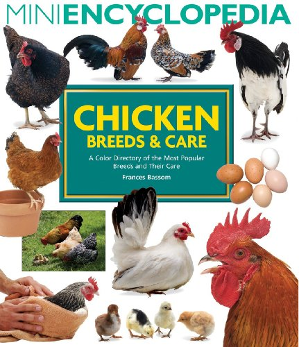 chicken breeds chart. chicken breeds chart. chicken