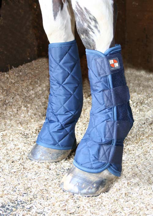 Horse Boots Uk Horse Therapy Boots Horse Travel Boots
