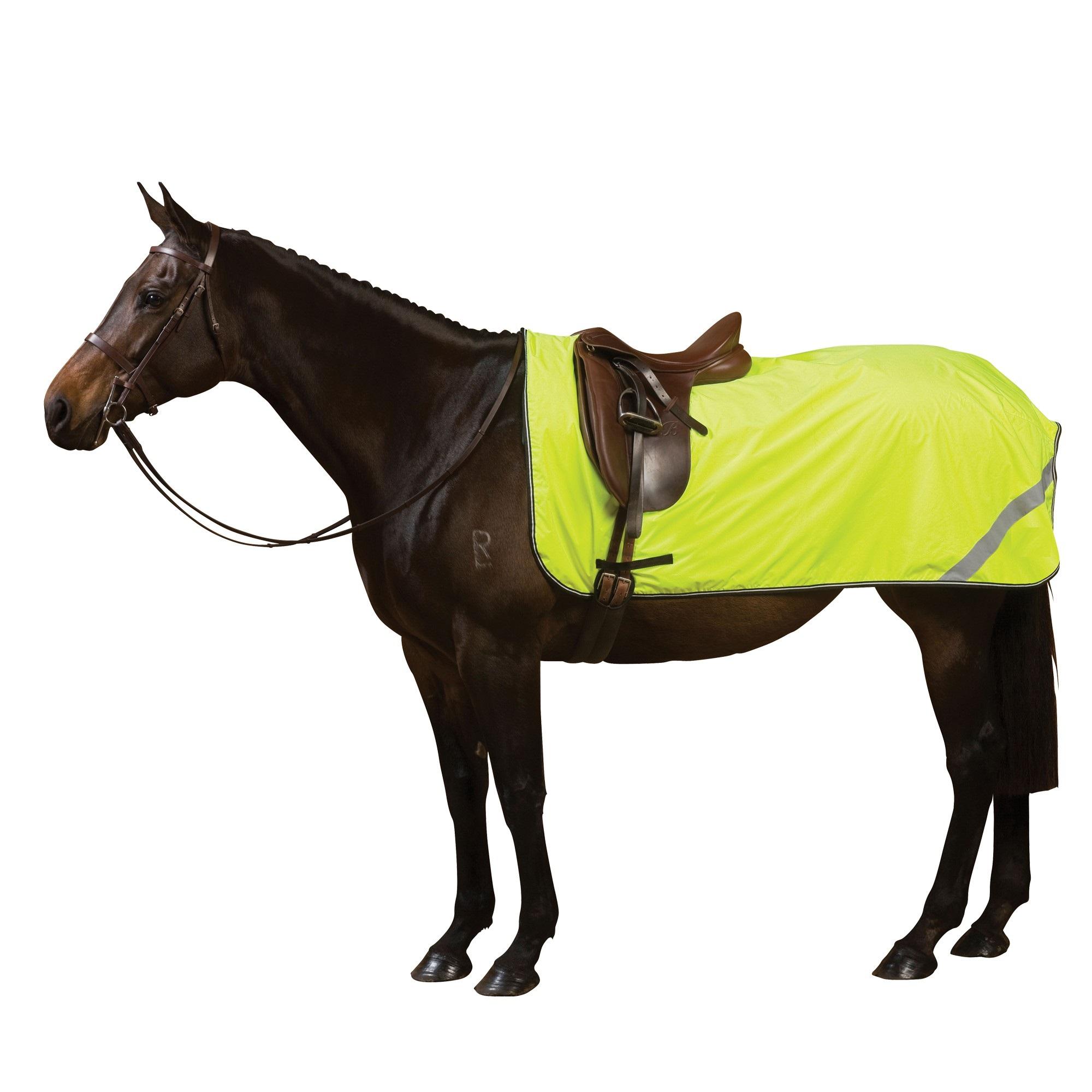 Horse Equipment UK | Equestrian Equipment | Horse Riding ... Saddler
